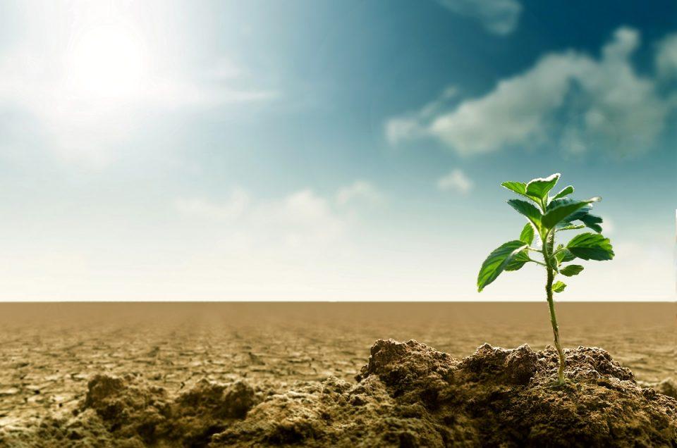 Los grandes retos medioambientales hasta alcanzar 2030