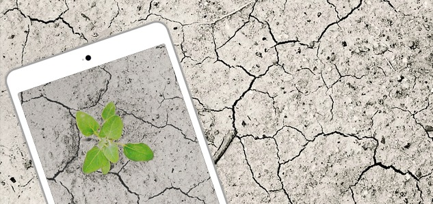 El cambio climático y la tecnológica se necesitan