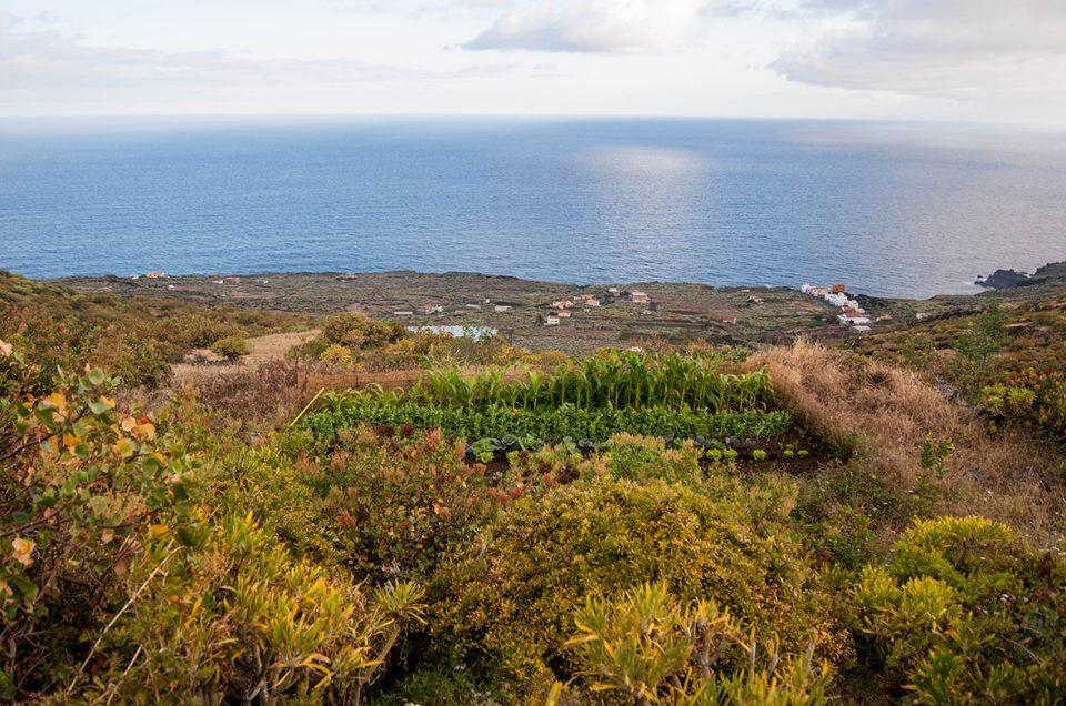 Permacultura y bioconstrucción ¿Claves para un futuro sostenible?