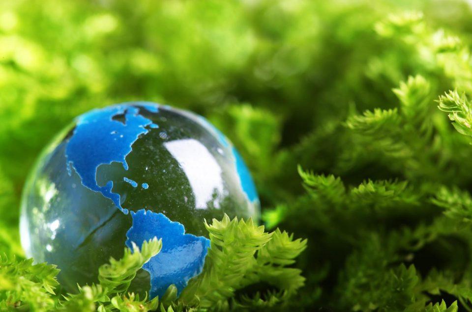 El marketing verde, una estrategia favorable al planeta