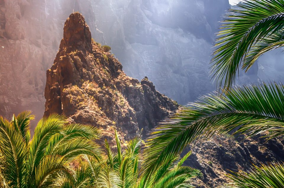 El espacio natural de Canarias, reserva de la biosfera