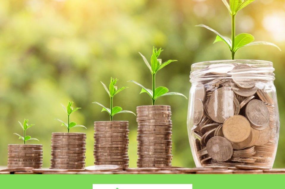 La inversión rentable que protege al medio ambiente