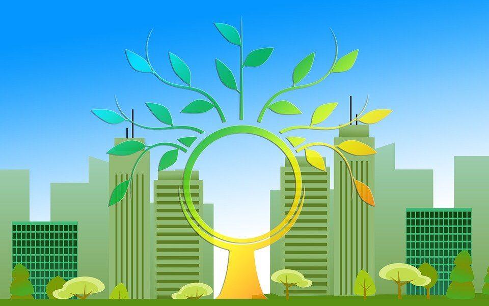 La economía ecológica y su repercusión sobre el planeta