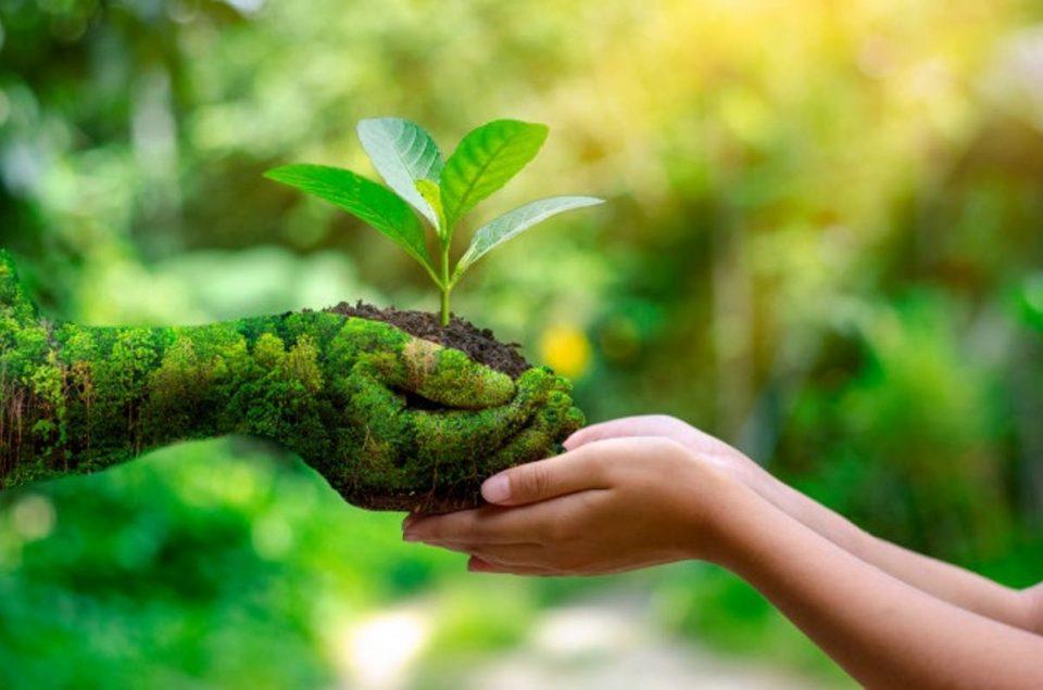 Dando pasos de gigante hacia un turismo más sostenible